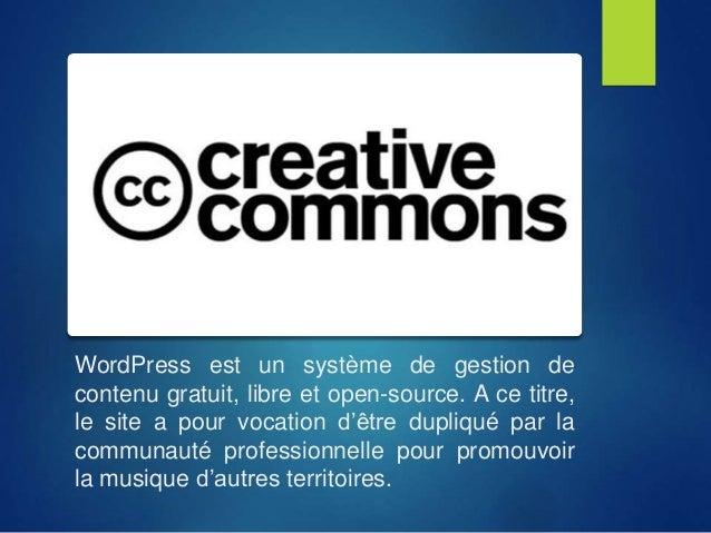 WordPress est un système de gestion de contenu gratuit, libre et open-source. A ce titre, le site a pour vocation d'être d...