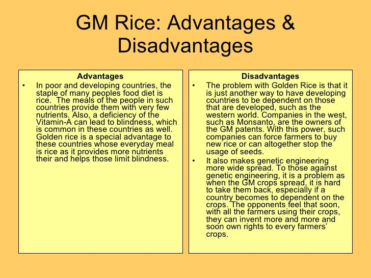 advantage disadvantage gm food essay The advantages and disadvantages of genetically modified food possible advantages of genetically engineered foods gm crops are more productive and have a larger yield/output.