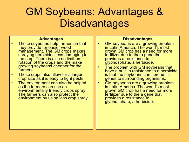 genetically modified food advantages and disadvantages essay ielts