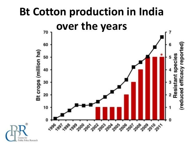 research papers on bt cotton In china, bt cotton was approved in 1997 for commercial use to control cotton   research was conducted in six major cotton-growing provinces (ie, henan,.