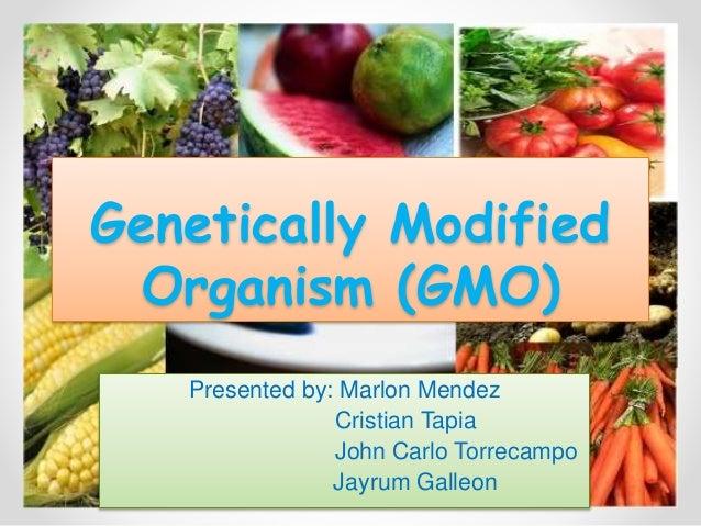 Genetically Modified Organism (GMO) Presented by: Marlon Mendez Cristian Tapia John Carlo Torrecampo Jayrum Galleon