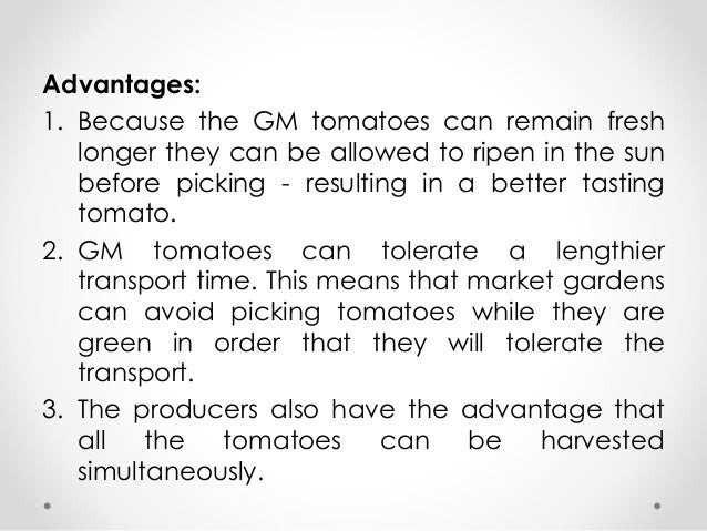 genetically modified advantages and disadvantages