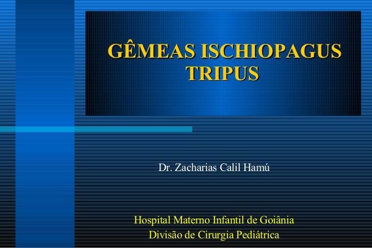 GÊMEAS ISCHIOPAGUS TRIPUS  Dr. Zacharias Calil Hamú Hospital Materno Infantil de Goiânia Divisão de Cirurgia Pediátrica