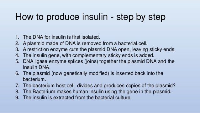 insulin production from genetically modified bacteria biology essay Disclaimer: this essay has been submitted by a student how is genetically modified bacteria used to make insulin insulin how is genetically modified bacteria used to make insulin mar 29, 2018 dtn staff twitter pinterest google plus.