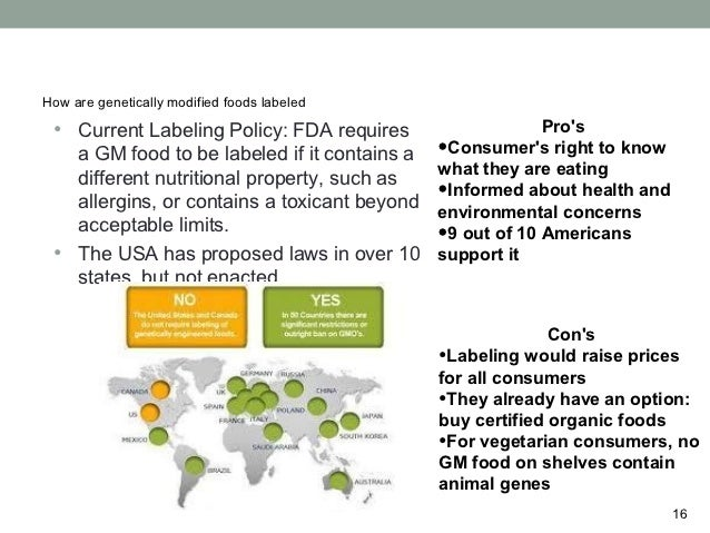genetically modified food 15 16 how are genetically modified foods