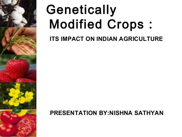 GeneticallyModified Crops :ITS IMPACT ON INDIAN AGRICULTUREPRESENTATION BY:NISHNA SATHYAN