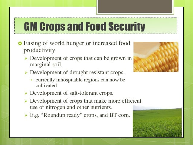 GM Crops and Food Security  Easing of world hunger or increased food productivity  Development of crops that can be grow...
