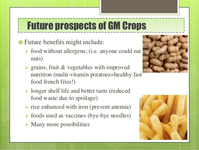 Future prospects of GM Crops  Future benefits might include:  food without allergens; (i.e. anyone could eat nuts)  gra...