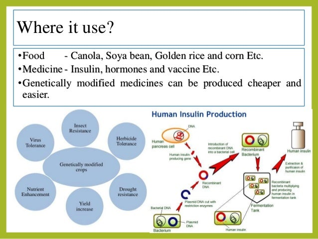 gmo genetically modified organisms agricultural 638 x 479 · jpeg
