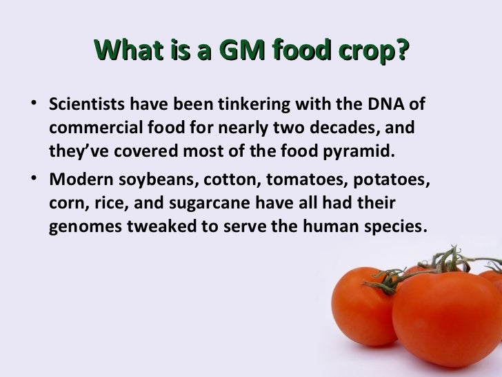 gm food Genetically modified food is produced from plants which have had their genetic  make-up tweaked in the lab scientists cut and paste a gene from another.