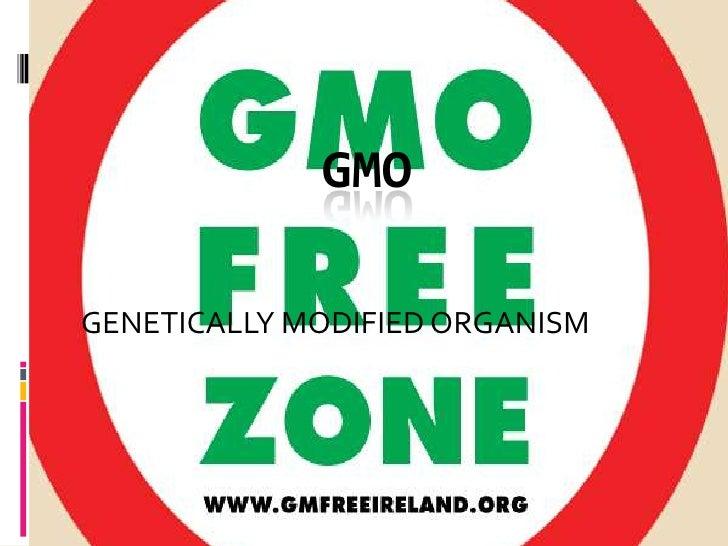 GENETICALLY MODIFIED ORGANISM<br />GMO<br />