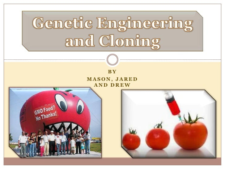 Genetic Engineering and Cloning<br />BY<br />Mason, Jared and DREW <br />