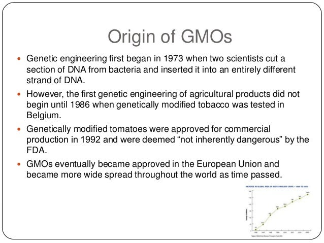 the disadvantages of genetically modified organisms Economical advantages may sometimes make politicians overlook the disadvantages of gmo the question is - can we tinker with the genetic material in the short term without any long-term implications economical advantages may sometimes make politicians overlook the disadvantages of gmo.