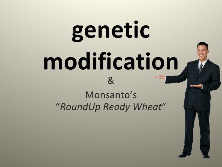 "genetic modification & Monsanto's "" RoundUp Ready Wheat """