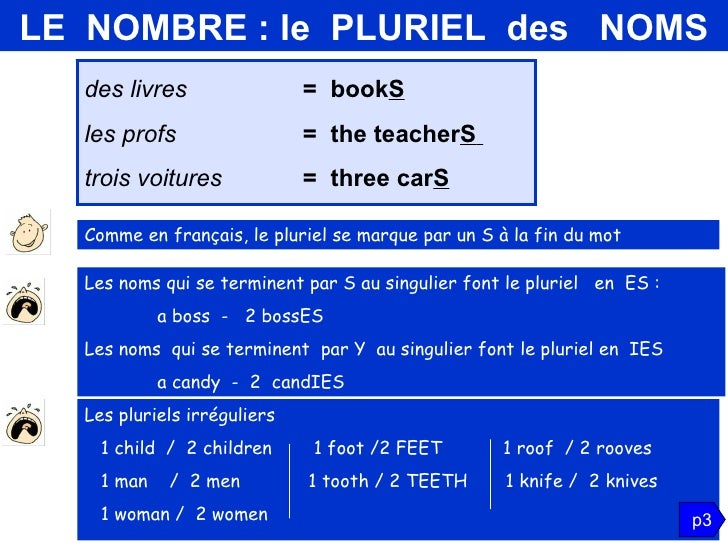 grammaire anglaise  groupe nominal