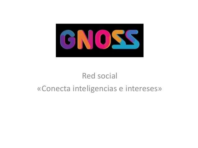 Red social «Conecta inteligencias e intereses»