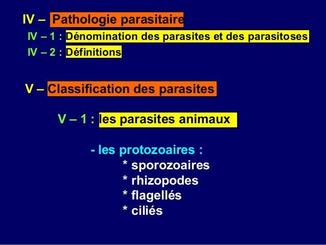 Les champignons les parasites dans la terre