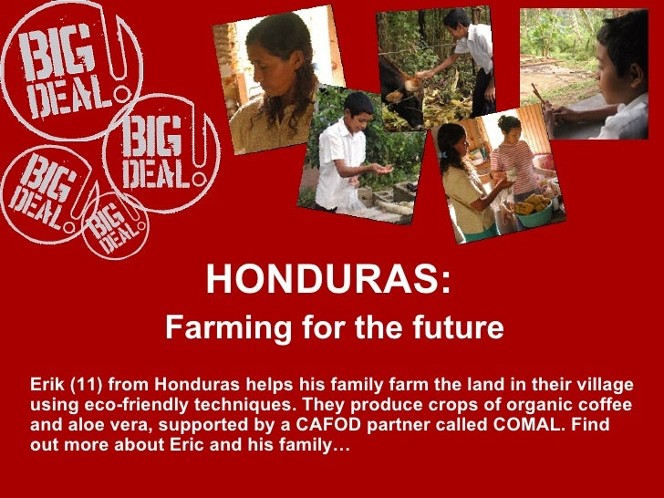 HONDURAS:  Farming for the future Erik (11) from Honduras helps his family farm the land in their village using eco-friend...