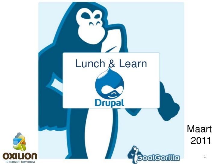 1<br />Lunch & Learn<br />Maart 2011<br />