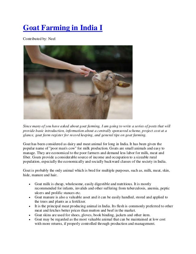 Goat farming in india for finance, subsidy & project related