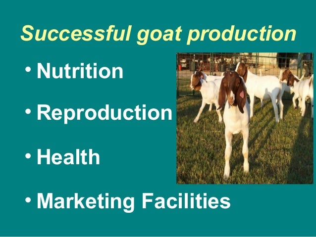 Successful goat production • Nutrition • Reproduction • Health • Marketing Facilities