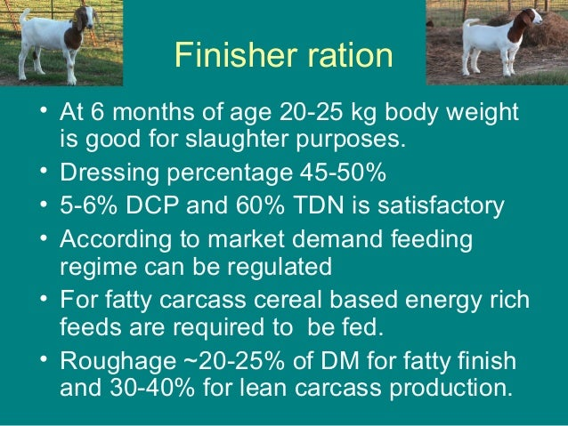 Finisher ration • At 6 months of age 20-25 kg body weight is good for slaughter purposes. • Dressing percentage 45-50% • 5...
