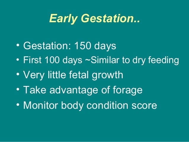 Early Gestation.. • Gestation: 150 days • First 100 days ~Similar to dry feeding • Very little fetal growth • Take advanta...