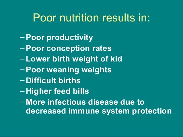 Poor nutrition results in: –Poor productivity –Poor conception rates –Lower birth weight of kid –Poor weaning weights –Dif...