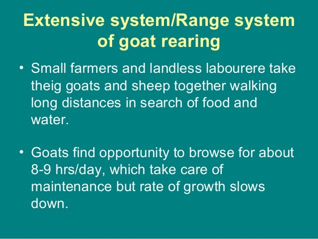 Extensive system/Range system of goat rearing • Small farmers and landless labourere take theig goats and sheep together w...