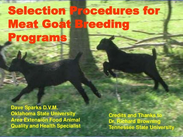 Selection Procedures forMeat Goat BreedingProgramsDave Sparks D.V.M.Oklahoma State University       Credits and Thanks toA...