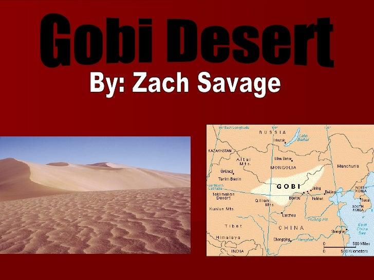 Gobi Desert By: Zach Savage