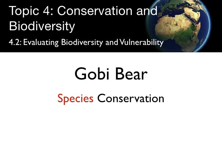 Topic 4: Conservation and Biodiversity 4.2: Evaluating Biodiversity and Vulnerability                      Gobi Bear      ...