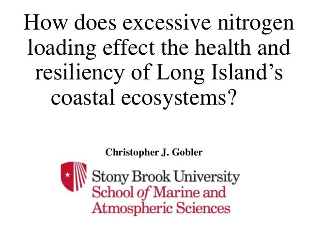 How does excessive nitrogen loading effect the health and resiliency of Long Island's coastal ecosystems? Christopher J. G...