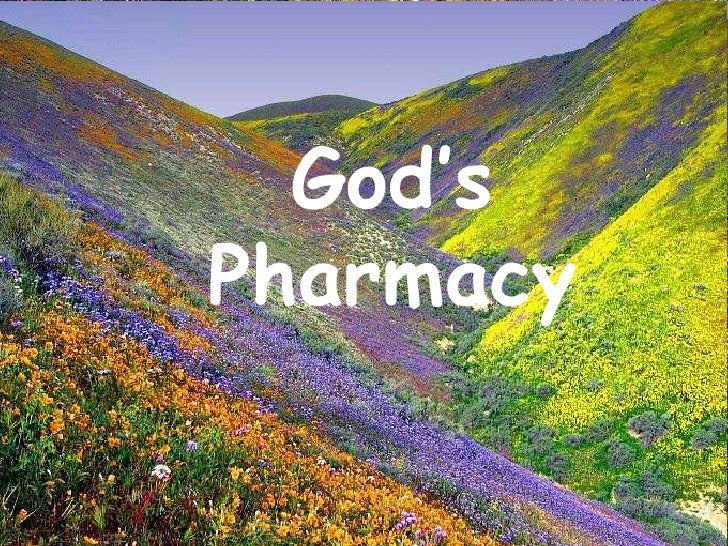 God's Pharmacy<br />