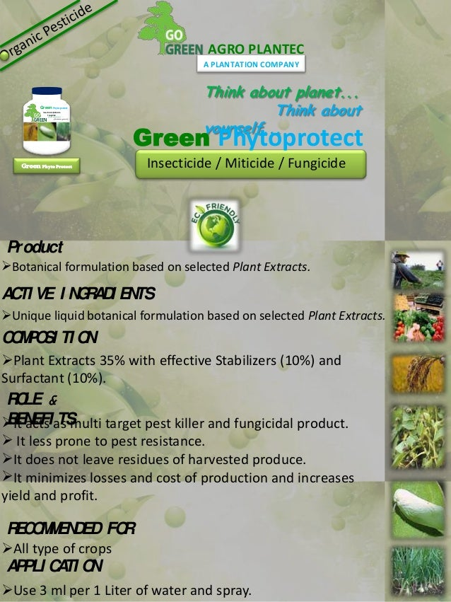 go green india essay Essay on go green save future - ways2gogreen blog the more we know and do, the better we all will be in simple words, people should go green to save earth.
