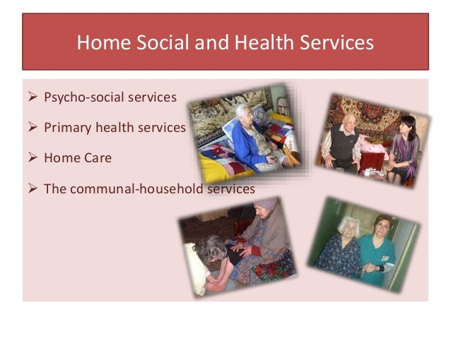 Home Social and Health Services  Psycho-social services  Primary health services  Home Care  The communal-household se...