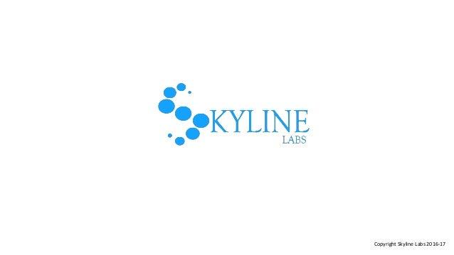 Copyright Skyline Labs 2016-17