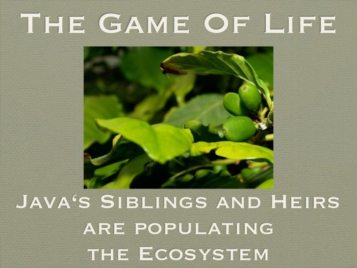 The Game Of Life    Java's Siblings and Heirs      are populating       the Ecosystem