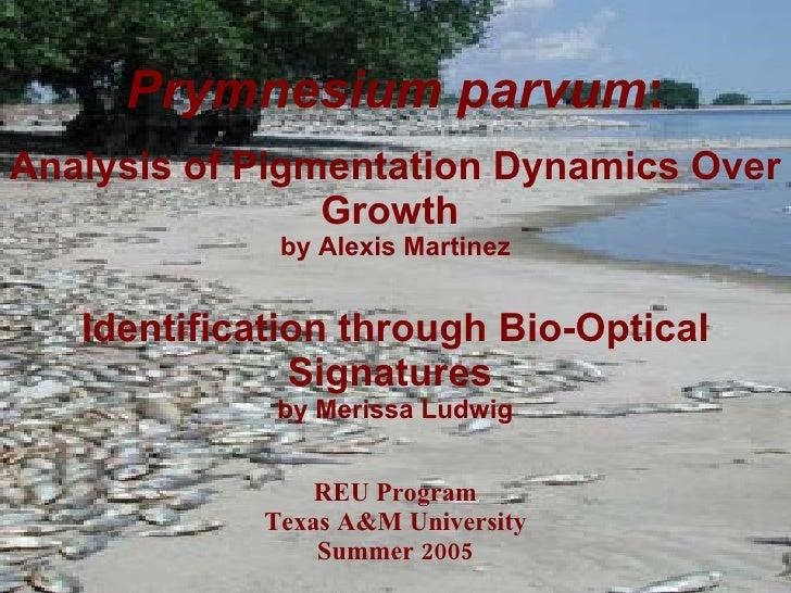 Prymnesium parvum : Analysis of Pigmentation Dynamics Over Growth  by Alexis Martinez Identification through Bio-Optical S...