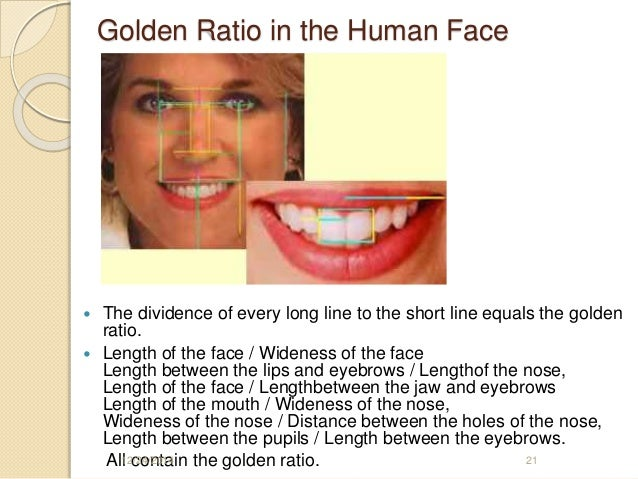 Golden ratio golden ratio in the human face ccuart Image collections