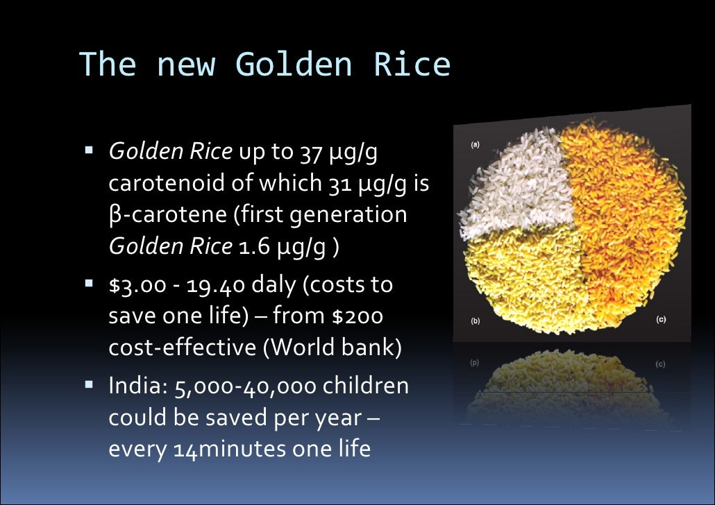 golden rice What is golden rice golden rice is a genetically engineered variety of rice (oryza sativa)it has been modified by inserting a gene from maize and a gene from bacteria found in soil which allows the plant to biosynthesise beta-carotene in the edible parts of rice.