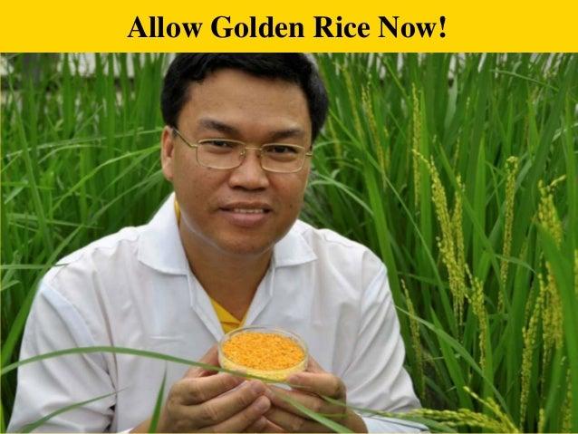 Allow Golden Rice Now!  1