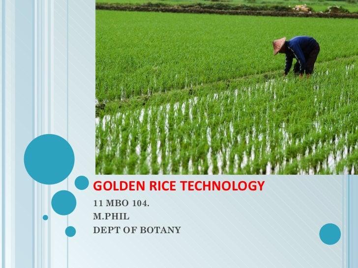 GOLDEN RICE TECHNOLOGY 11 MBO 104. M.PHIL DEPT OF BOTANY
