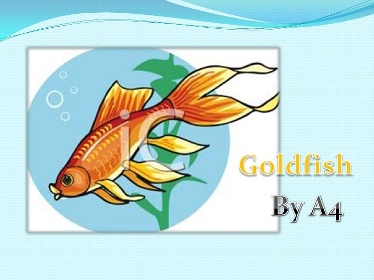 Goldfish<br />By A4<br />
