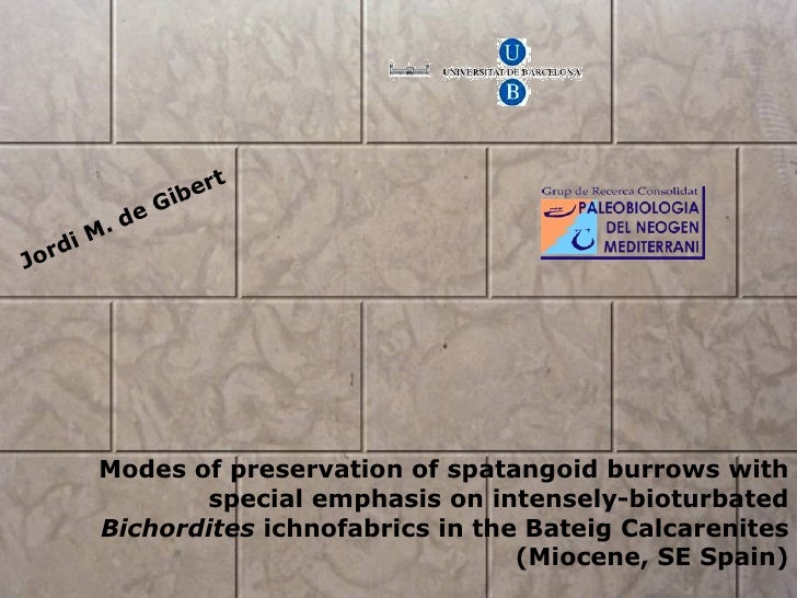 Jordi M. de Gibert Modes of preservation of spatangoid burrows with special emphasis on intensely-bioturbated  Bichordites...