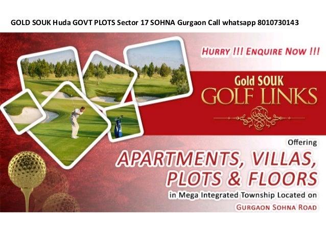 GOLD SOUK Huda GOVT PLOTS Sector 17 SOHNA Gurgaon Call whatsapp 8010730143