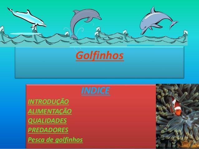 Golfinhos INDICE INTRODUÇÃO ALIMENTAÇÃO QUALIDADES PREDADORES Pesca de golfinhos