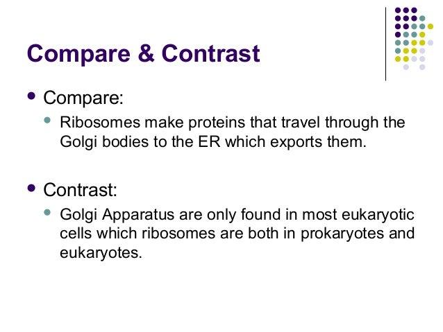 Compare the spliceosome to the ribosome - Experts Mind
