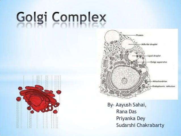By- Aayush Sahai, Rana Das Priyanka Dey Sudarshi Chakrabarty