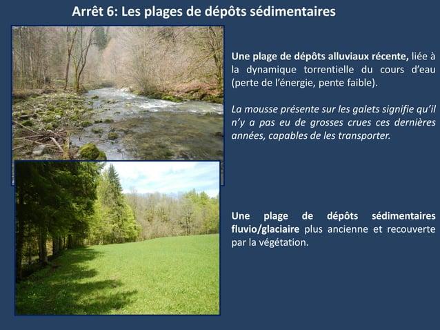 Arrêt 6: Les plages de dépôts sédimentairesUne plage de dépôts alluviaux récente, liée àla dynamique torrentielle du cours...